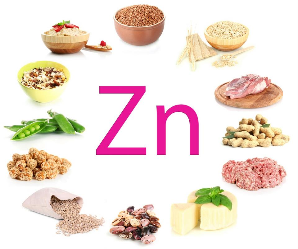 Zinc plays an important role in the function of growth, immunity, and reproduction