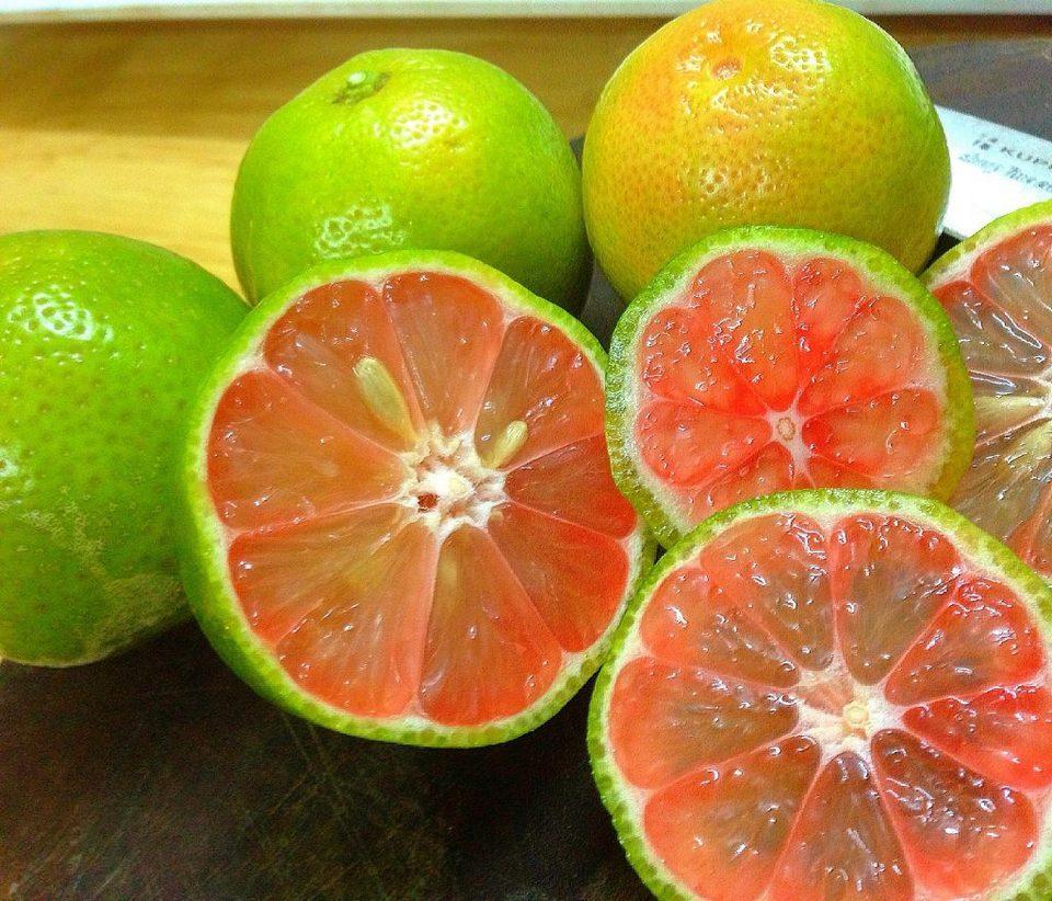 Lemon or grapefruit peels are useful to help us clean the sink
